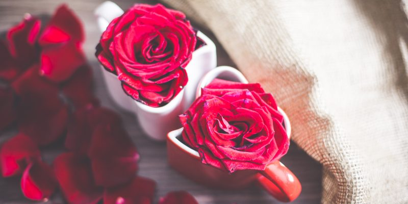 love-heart-coffee-cups-with-roses-and-rose-leafs-2-picjumbo-com